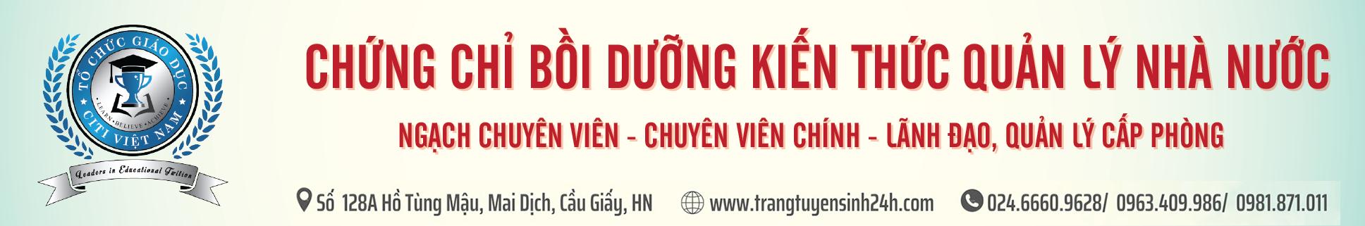 banner citi vn-02